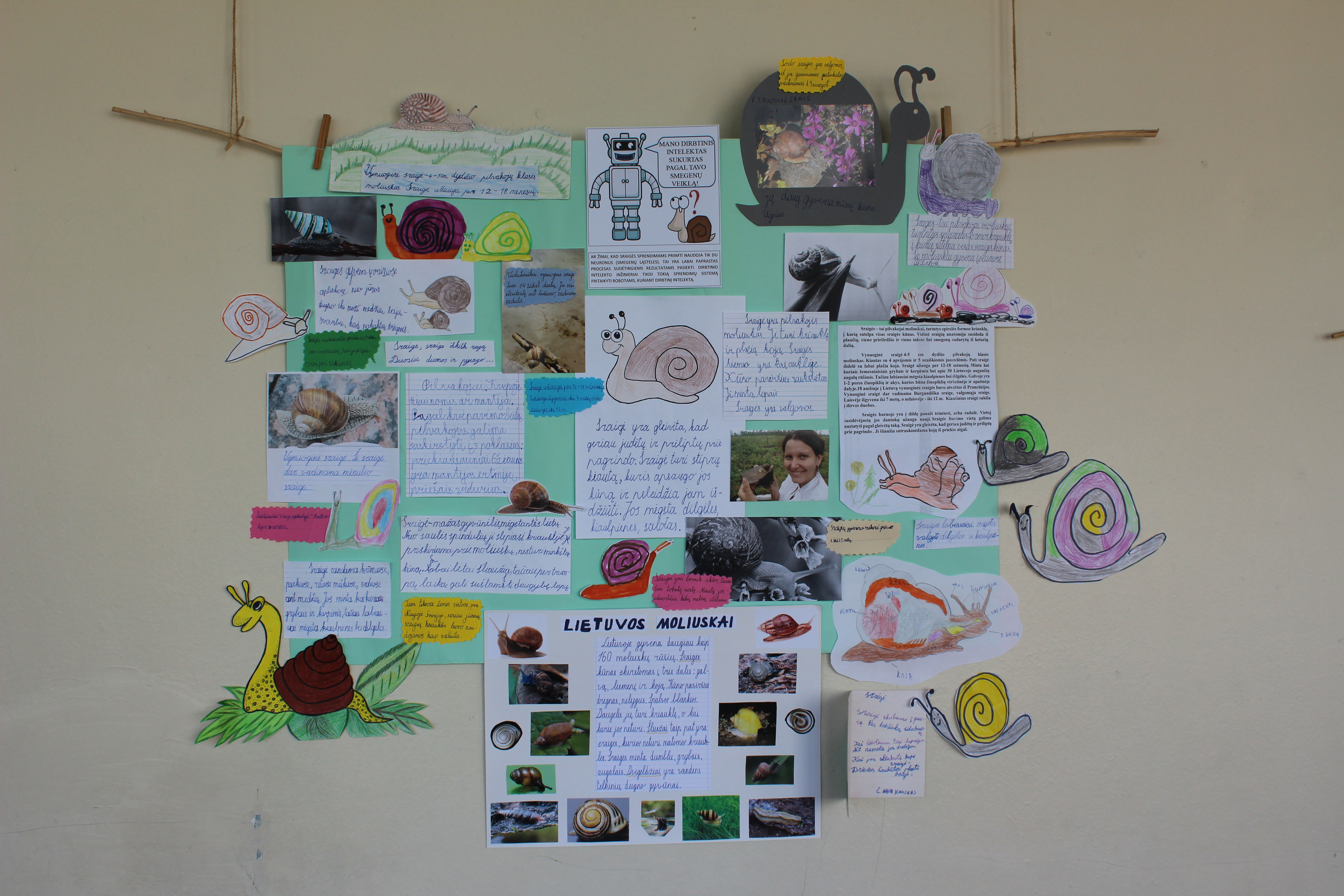 Mokslinė konferencija gimnazijoje